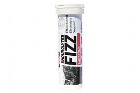 Hammer Nutrition Endurolytes Fizz (13 Serving Tube)