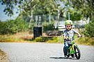 Bell Lil Ripper Toddler Helmet Bell Lil Ripper Toddler Helmet