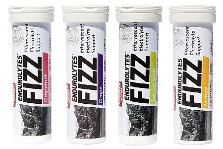 Hammer Nutrition Endurolytes Fizz (13 Tablets)